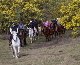 Burnelee Excursions on Horseback