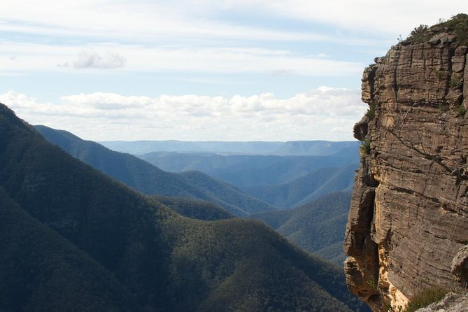Inside the Greater Blue Mountains World Heritage - A Wildlife Safari Overnight