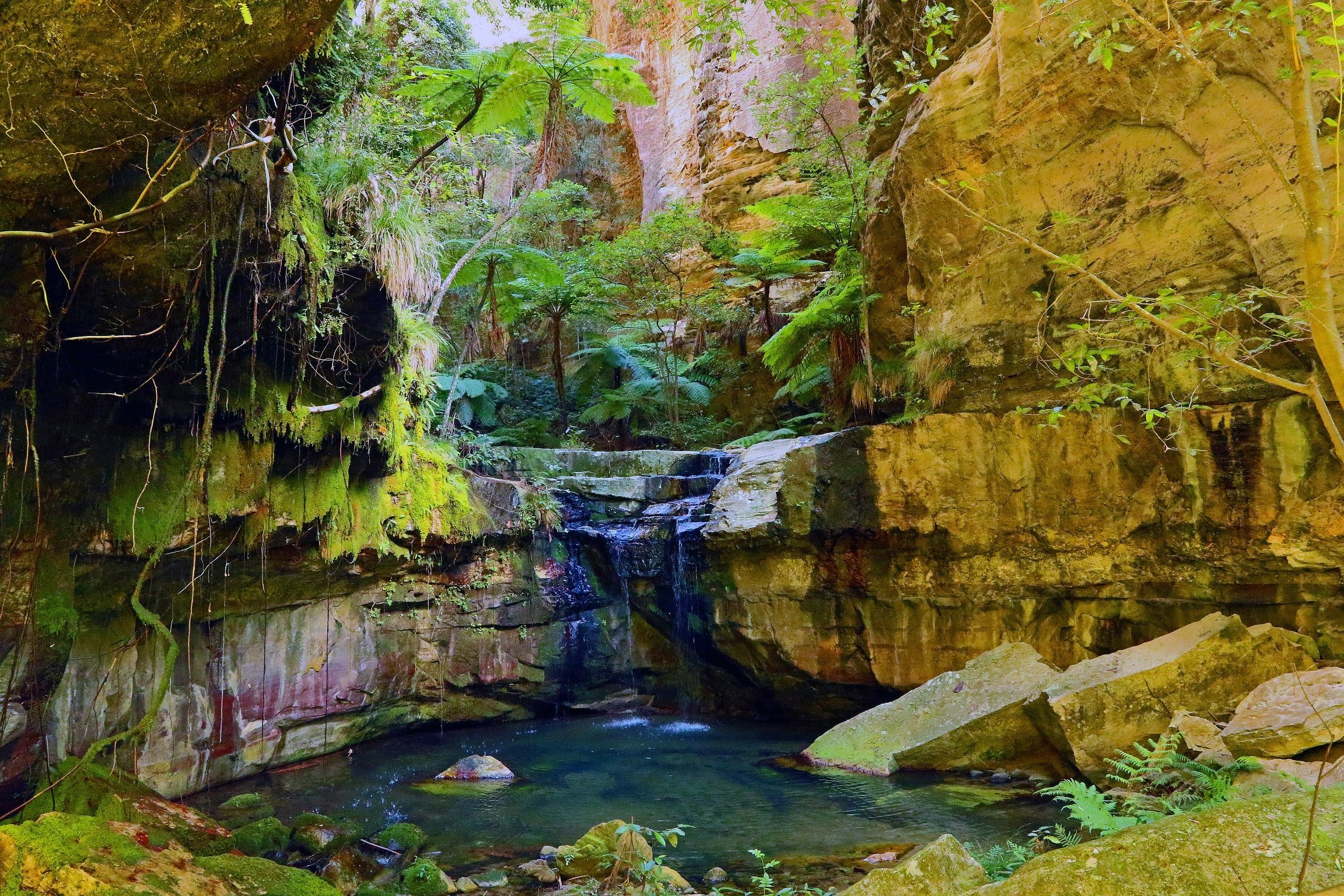 Glimpse of the Outback 5 Day Tour - Roma and Surrounds