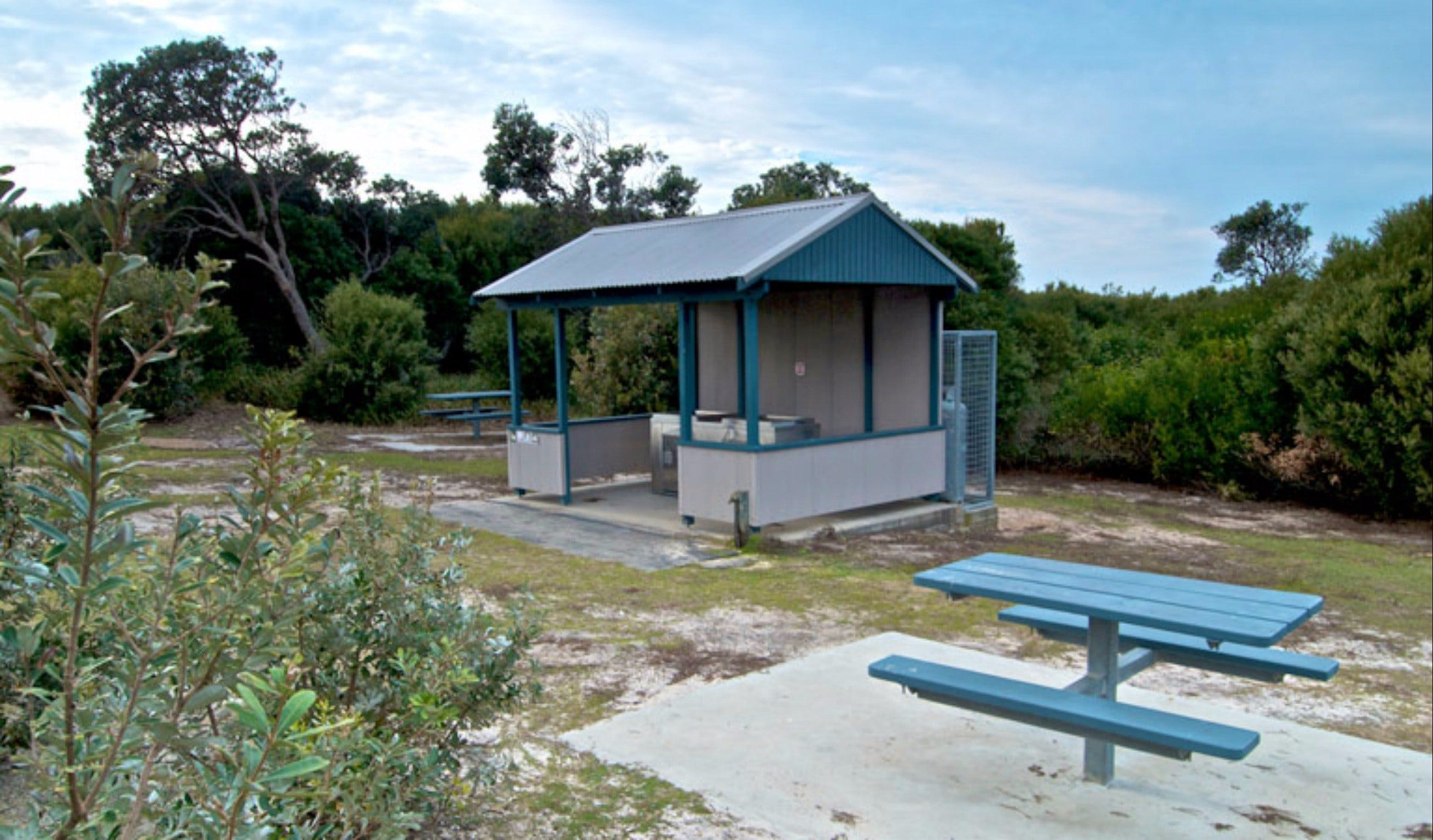 Tea Tree picnic area and lookout